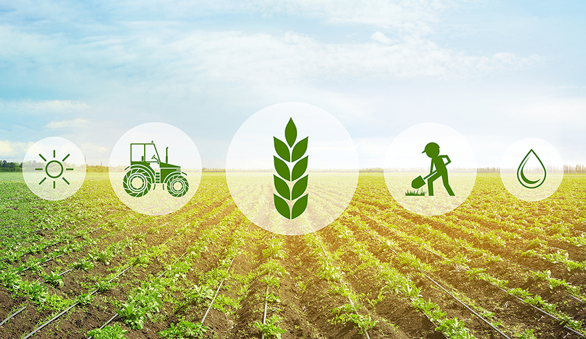 Agriculture 4 Sustainable Rural Education & Livelihood