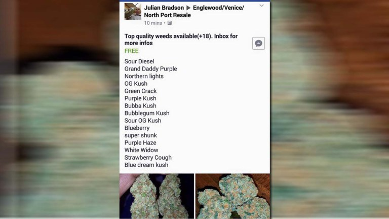 Sarasota sheriff's office pokes fun at man trying to sell weed on Facebook_302406