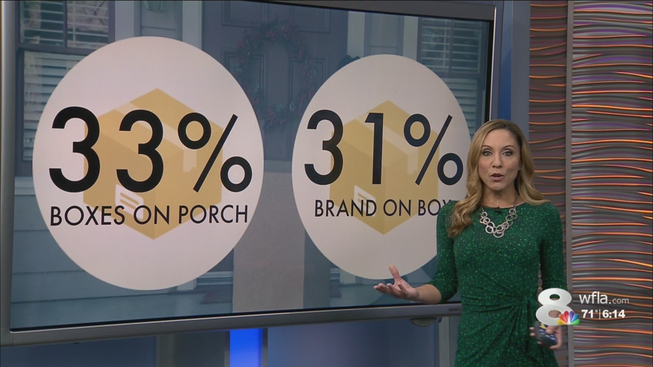 Porch Pirate Statistics