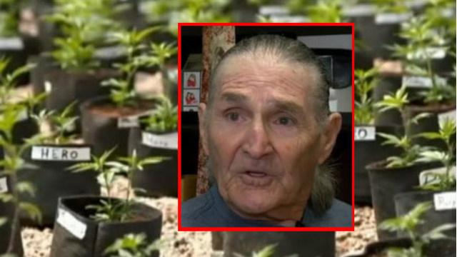 Joe Redner's medical marijuana fight