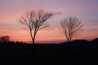 Sonnenuntergang Spremberg