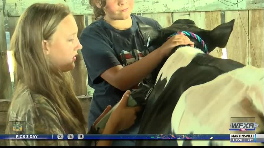 Ag Life- Kids showcase livestock at NRV Fair_32815076
