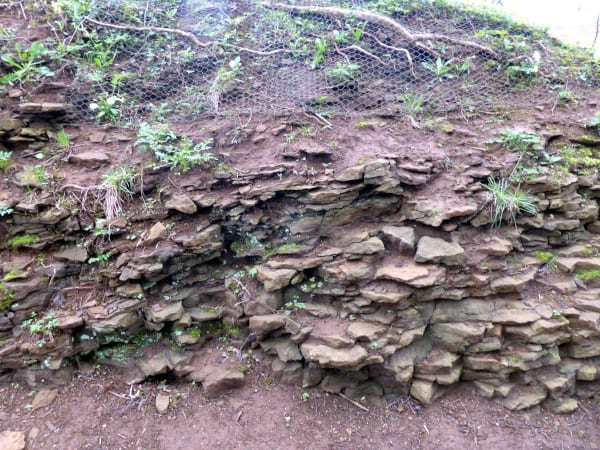 Local rock exposure at Upton House