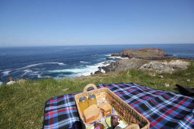Picnic in Newfoundland