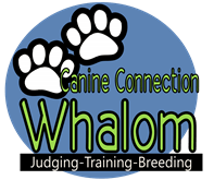 Whalom Canine Connection