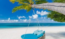 Image of beach hammock hanging from tree above sand with ocean in the background.