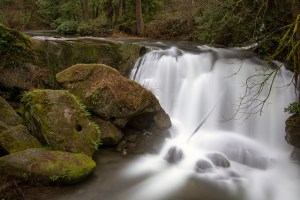 You can feel the spray from other-worldly Whatcom Falls in Whatcom Falls Park. Photo credit: Kenneth Kearney.