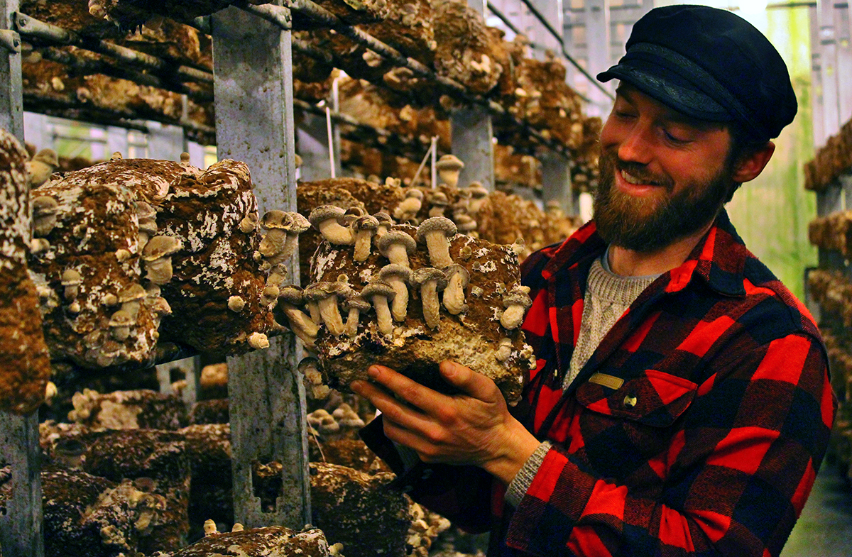 Founder Alex Winstead holding a fruiting block of shiitake mushrooms