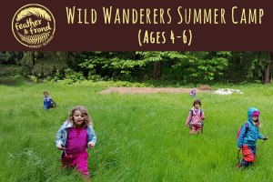 Wild Wanderers Summer Camp @ Fairhaven Park   Bellingham   Washington   United States
