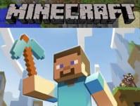 Teen Minecraft @ WCLS Blaine Library | Blaine | Washington | United States