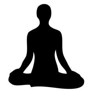 Monday Meditation @ Center for Mindful Use | Bellingham | Washington | United States