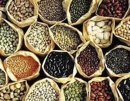 Seed Saving for Gardeners with Terri Wilde @ Chuckanut Center | Bellingham | Washington | United States