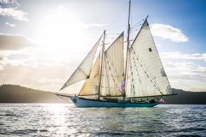 Schooner Zodiac Salmon Dinner Sail @ Schooner Zodiac | Bellingham | Washington | United States