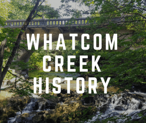 Whatcom Creek Tour @ Maritime Heritage Park