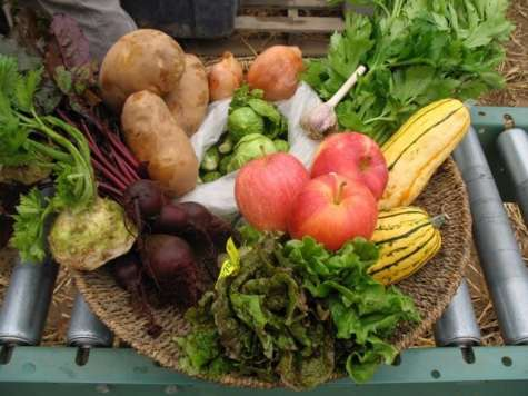 Cedarville Farms yields a delightful bounty. Photo courtesy: Cedarville Farms.