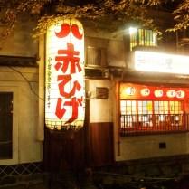 kyoto-day-4-kyoto-night_4103572013_o
