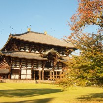 kyoto-day-5-todaji-shrine_4105760811_o
