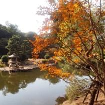 tokyo-day-9-shinjuku-gyoen-gardens_4093574570_o