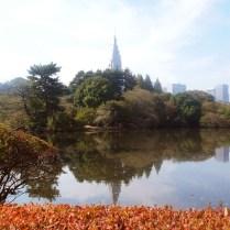 tokyo-day-9-shinjuku-gyoen-gardens_4093575254_o