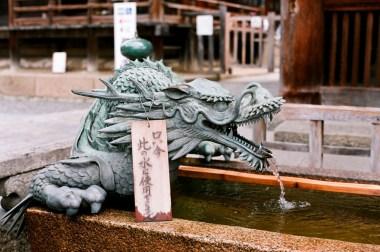 dragon_4114301625_o