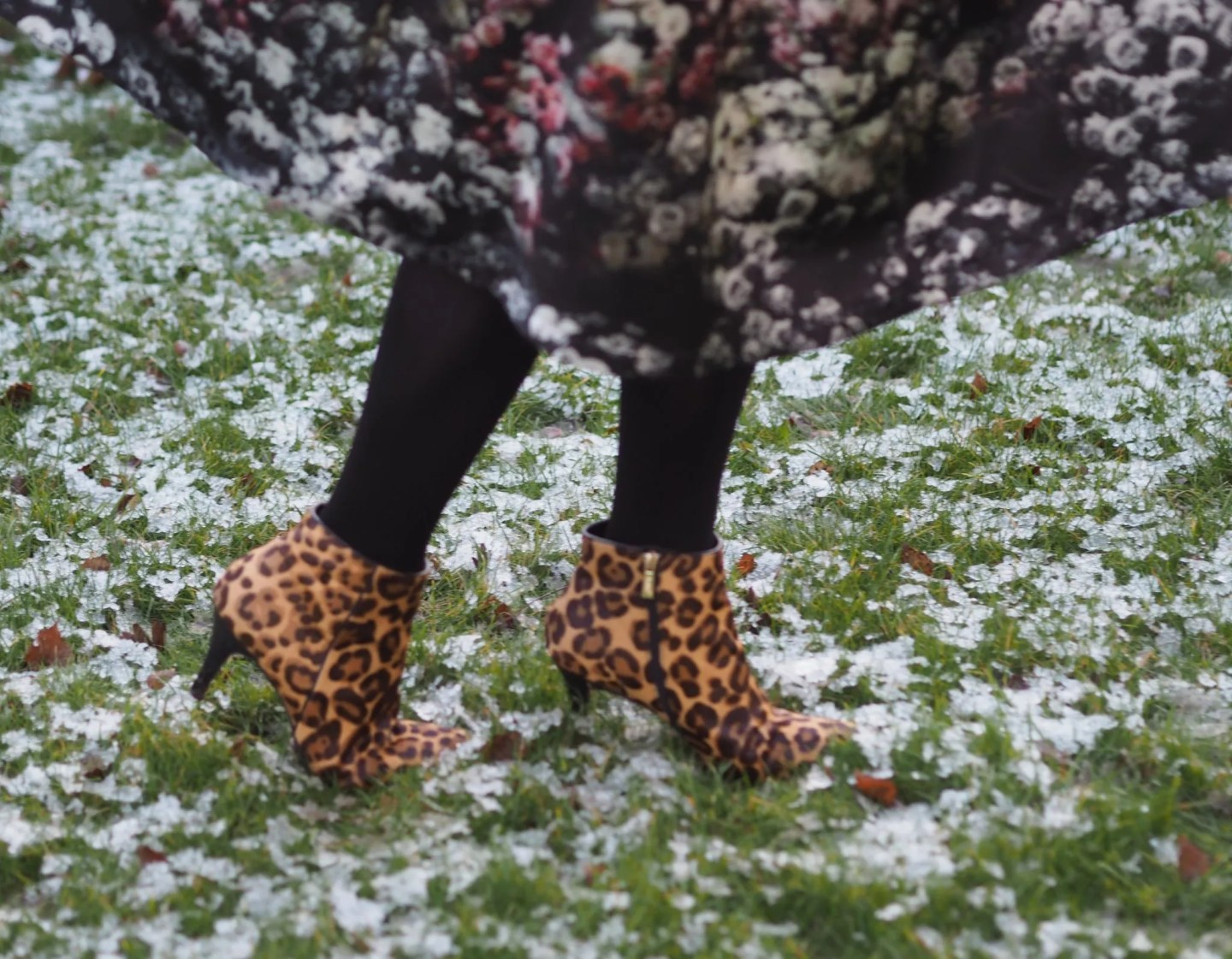 what-lizzy-loves-how-style-high-heeled-leopard-ankle-boots-floral-midi-dress