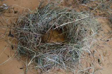 Step 4: We repeat Step 2 and 3 while making sure to hide the florist wire under each layer of hay.