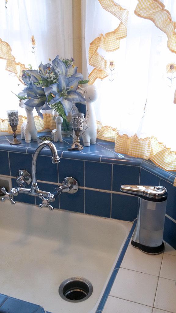Svinz Soap Dispenser