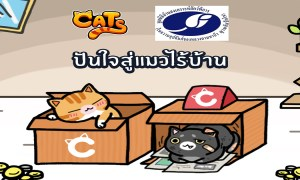Charity Campaign Line cats