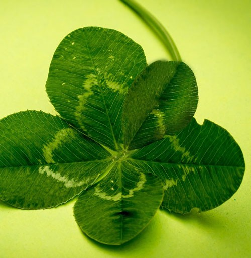 Meaning For Each Leaf On The Five Clover