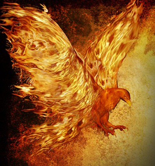 59d08691fdaec Phoenix Meaning for Tattoo Ideas on Whats-Your-Sign