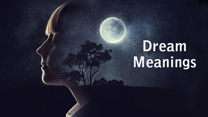 What Does it Mean? Dreaming of Birds and Bird Dream Meaning