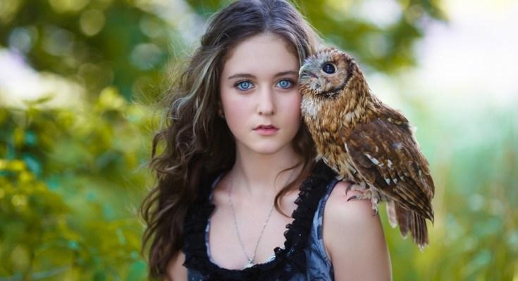 owl totem messages
