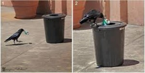 Educates are spoiling city and least educate are cleaning the city.... Whatsapp education images..