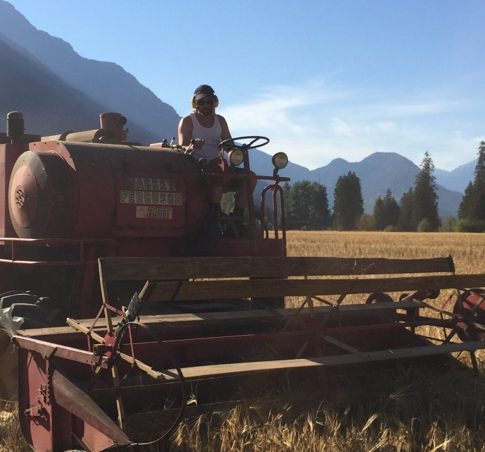 BF Harvest 2