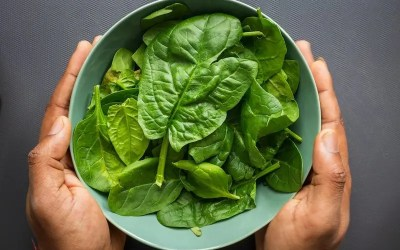 Ten Amazing Health Benefits of Spinach