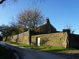 An imposing brown stone wall covered with moss masks a tall house and a garden. Only tall, bare trees can be seen against the blue sky.
