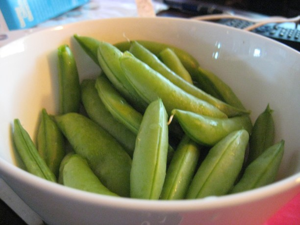 My fav...sugar snap peas! WAAAY more delicious fresh from the garden than those shriveled ones from the grocery store.