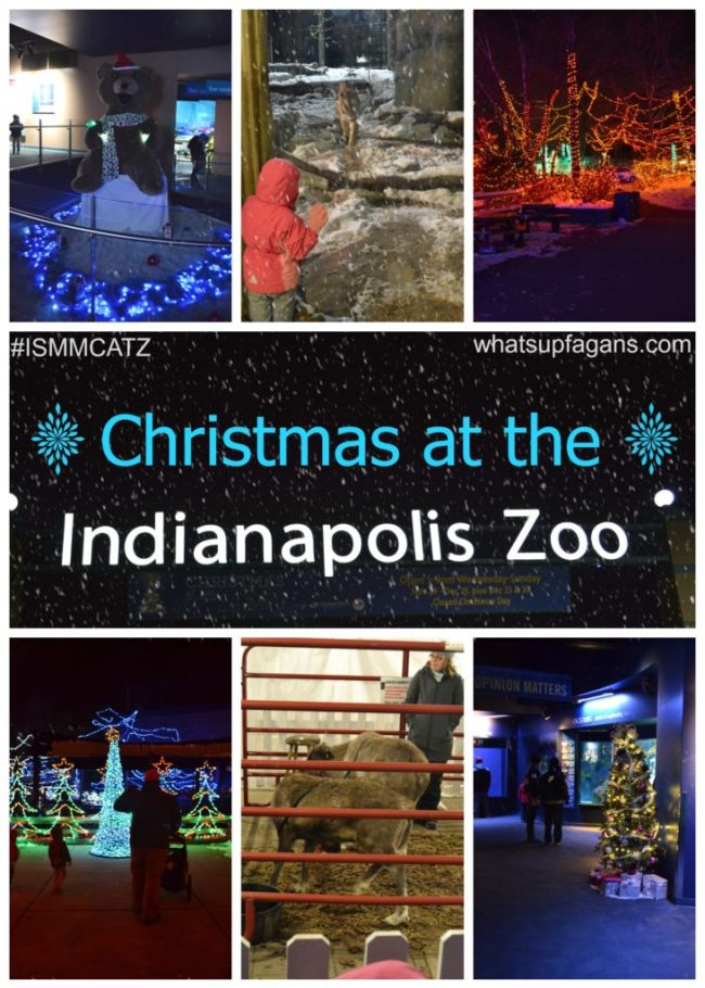 Christmas at the Zoo - An Indianapoils Zoo Holiday Tradition. #ISMMCATZ whatsupfagans.com