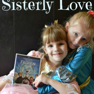 Disney's FROZEN is really all about sisterly love - Anna love Elsa despite everything. #shop #cbias #FROZENFun| whatsupfagans.com