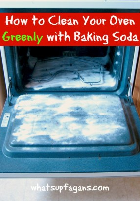 Cleaning Tip: How to Clean Your Oven Greenly with Baking Soda