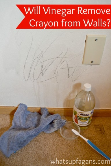 Find out how to use vinegar to remove crayon from walls, and see if it actually works. | whatsupfagans.com