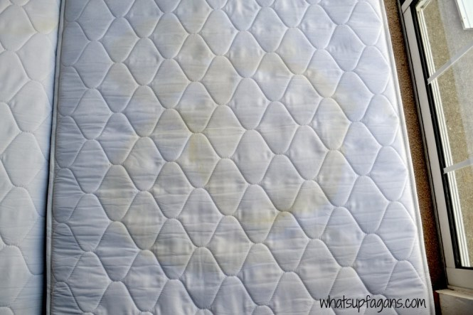 How To Remove Stains From Your Mattress And The Smell Fantastic Easy