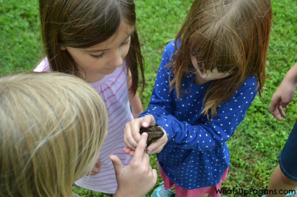What's more educational than hands on learning? Camping with kids sure allows for lots of great educational moments.