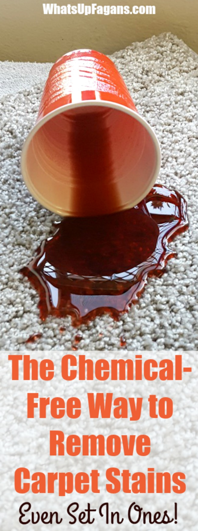 The Surprisingly Easy Chemical-Free Way to Remove Carpet Stains