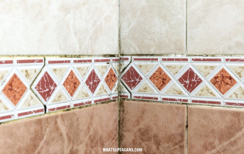 black mold in showers grout and tiles