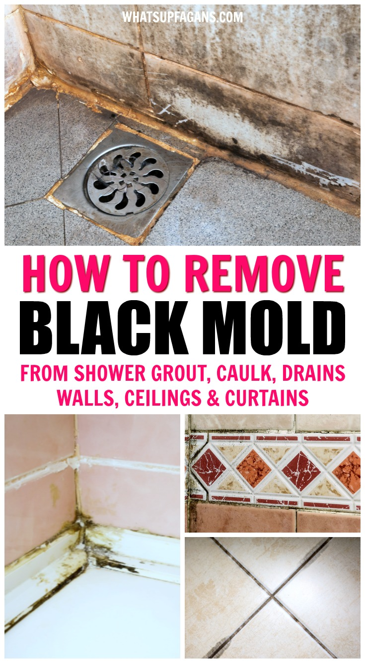 SO HELPFUL!! Great information on all things black mold in showers including black mold health risks, how to remove black mold from shower caulk, behind shower walls, off shower ceilings, shower curtains, and shower drains! #shower #showers #mold #moldremoval #molds #bathroom #bathrooms #cleaning #clean #cleaningtip