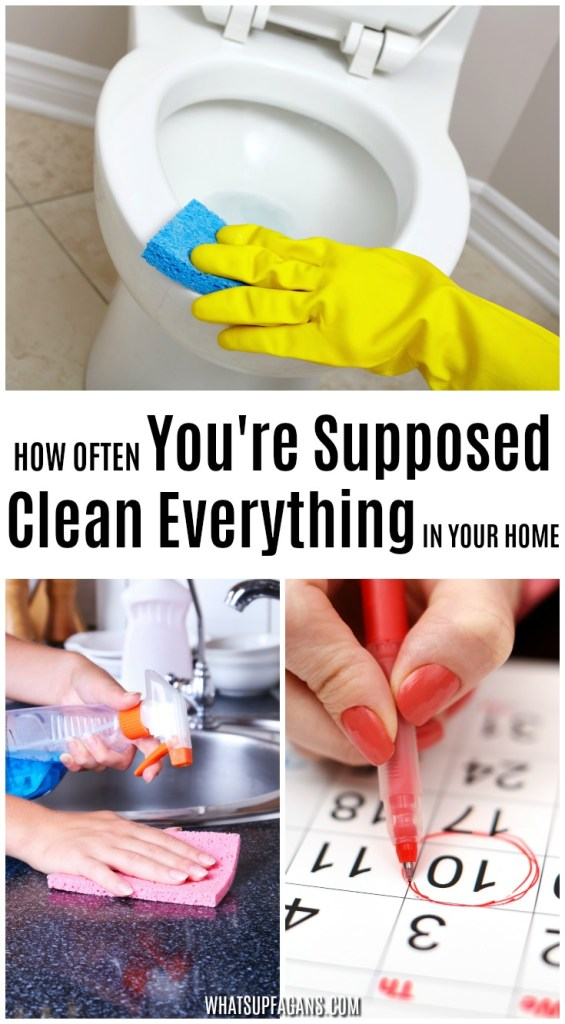 how often should you clean your house - free printable and infographic on cleaning schedules and routines