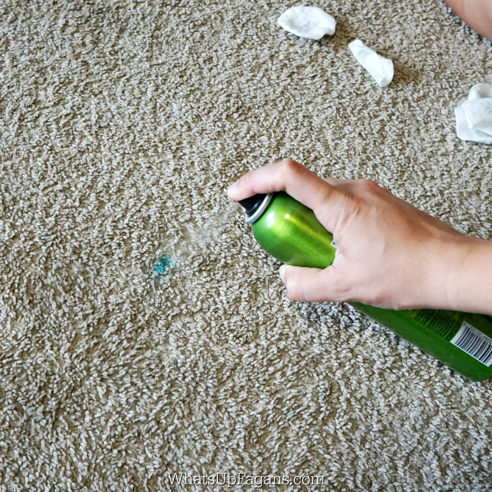 Hand spraying oil-free hairspray onto permanent marker stain on the carpet in an effort to get rid of permanent market stain on carpet