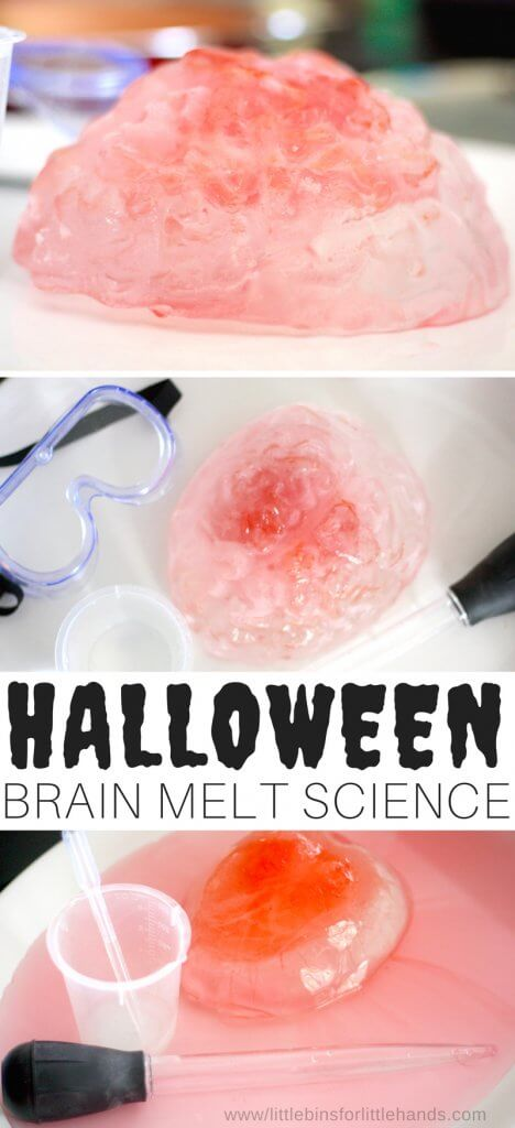 Halloween science brain melt activity