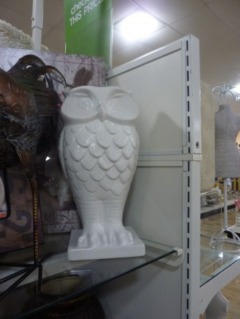 Seeing Animals   Animal Decor for the Home